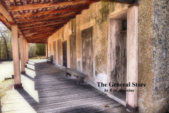 The-General-Store