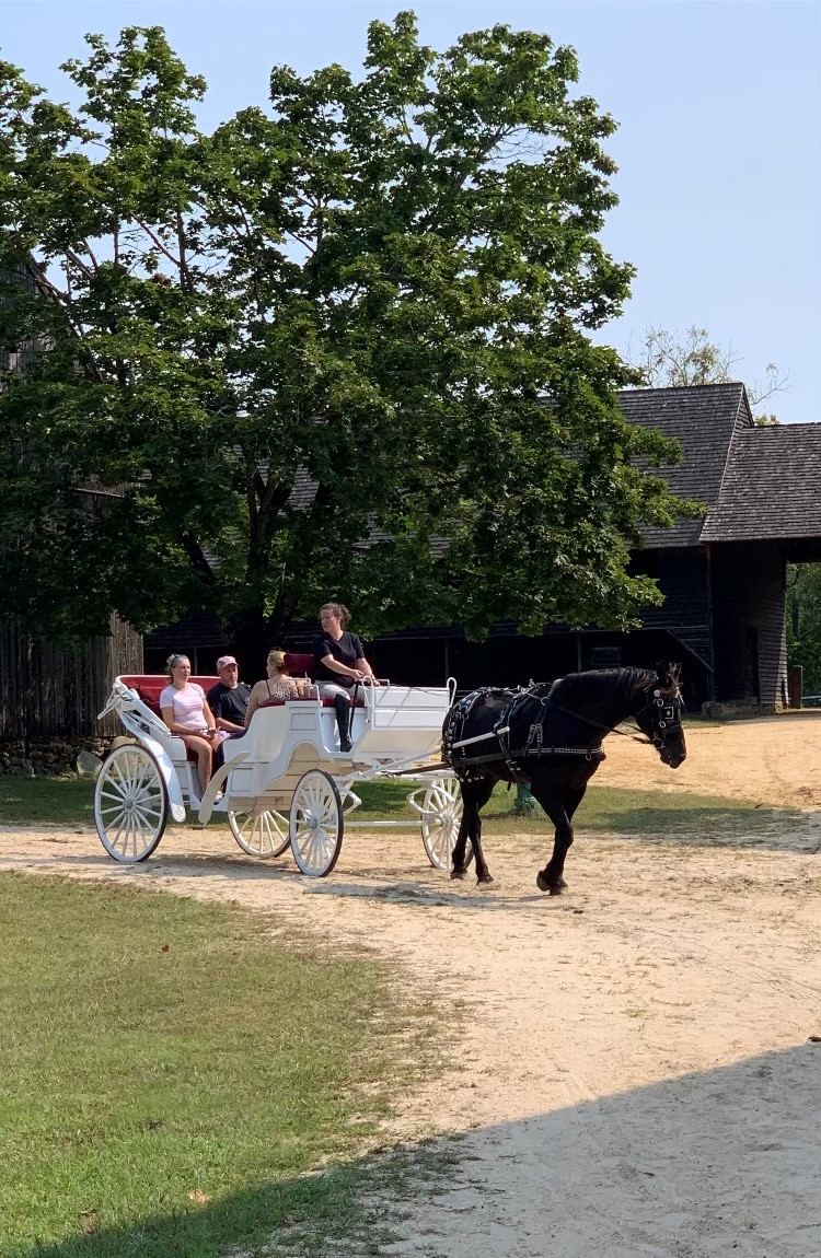 Carriage Rides at Batsto